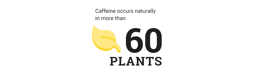Caffeine occurs naturally in more than 60 plants
